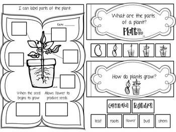 LIFE SCIENCE INTERACTIVE JOURNAL {K-2} - TeachersPayTeachers.com