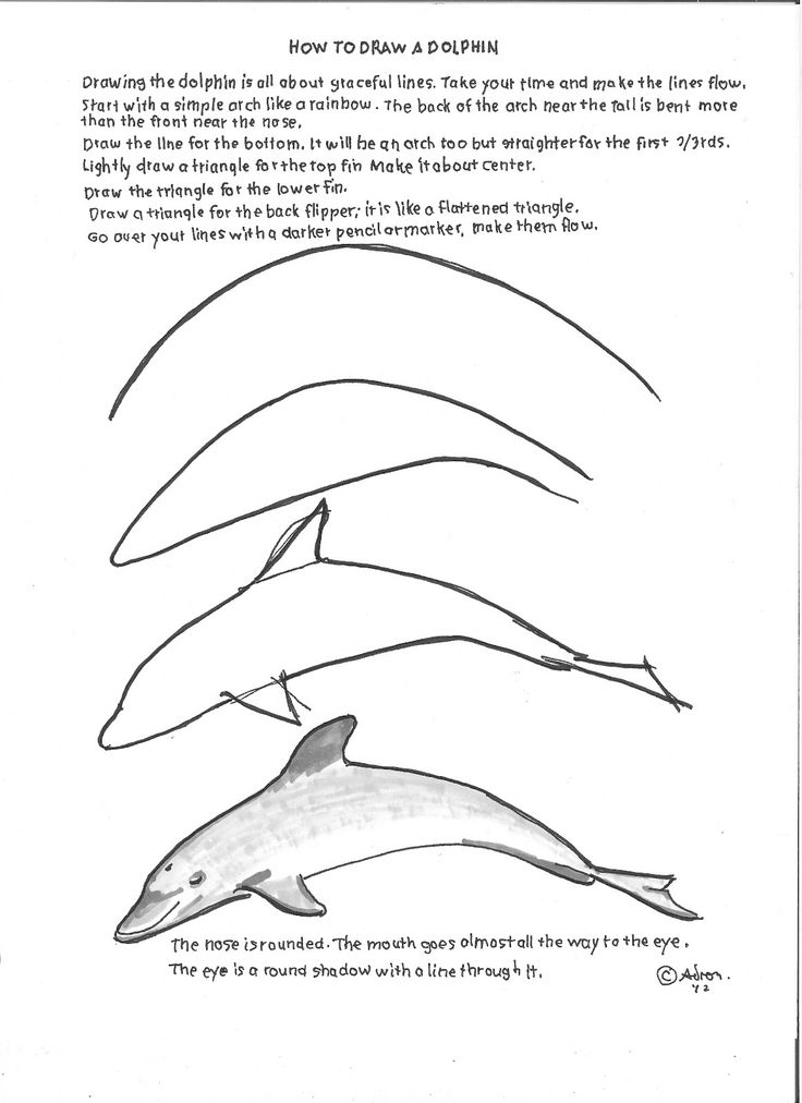 How to Draw Worksheets for Young Artist: How to Draw A Dolphin Drawing Lesson For Young Artist.