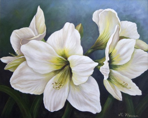 """""""fay's hippeastrum"""" oil on canvas - 50.5cm x 40cm - Mary Weaver, Art Galleries, Crows Nest, QLD, 4355 - TrueLocal"""
