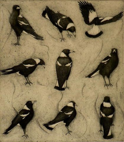 acrylic australian magpie paintings - Google Search