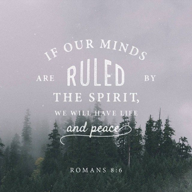 Verse of the Day Romans 8:6-8 NKJV http://bible.com/114/rom.8.6-8.NKJV