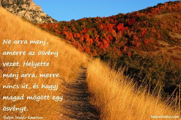 Ne arra menj, amerre az ösvény vezet. Helyette menj arra, merre nincs út, és hagyj magad mögött egy ösvényt.