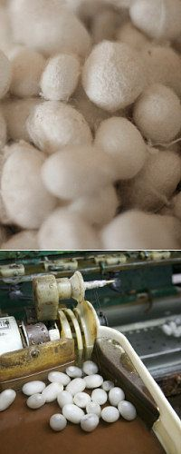 All about fibers, very interesting... Silk, angora, wool, bamboo.