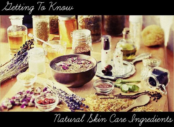 Getting To Know Natural Skin Care Ingredients | Around2Beauty