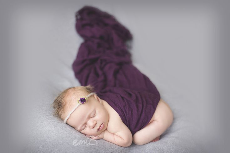 12 days new- grey and plum newborn photography | emiB photography