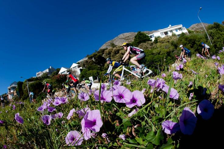 Cape Argus Cycle Tour - Kapstadt