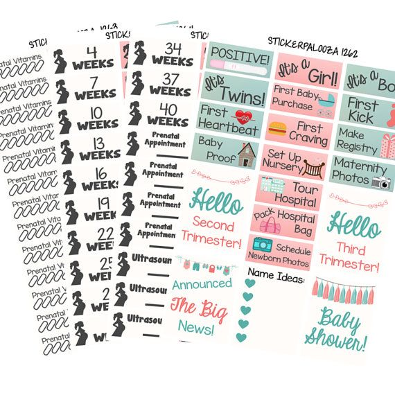 Pregnancy Planner Sticker Kit, Pregnancy Milestone Stickers, Pregnancy Stickers