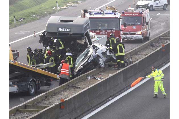 Un tasso sulla A14: incidente e panico tra gli automobilisti con rallentamenti e code