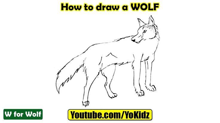 How to draw a Wolf  In this post, we are going to learn How to draw a Wolf step by step  Drawing by YoKidz  #YoKidz #Drawing #PencilDrawing #Generaldrawing #Like4like #Likeforlike #Share4share #Shareforshare #Draw #Blackandwhite #Wolf #DrawWolf