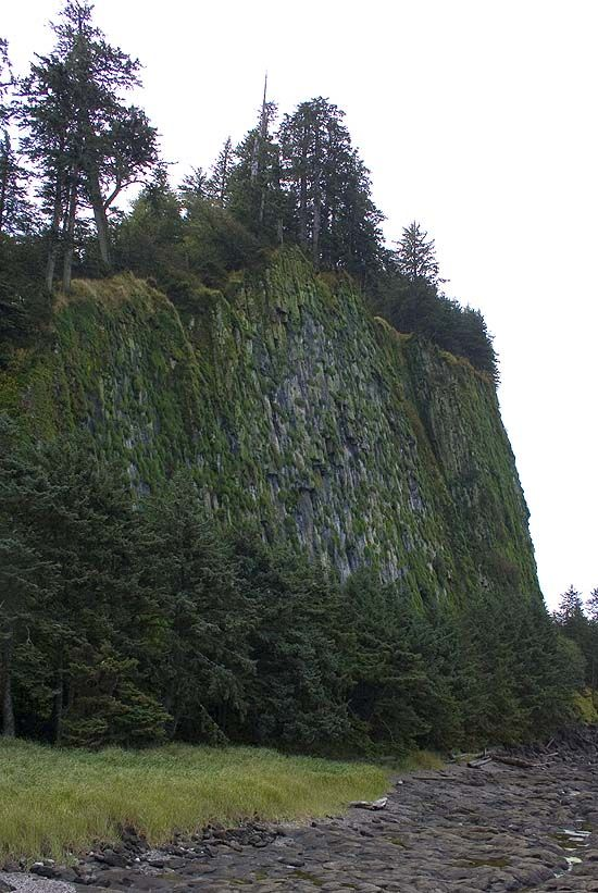 Tow Hill Naikoon Park Haida Gwaii  (formerly known as Queen Charlotte Islands)