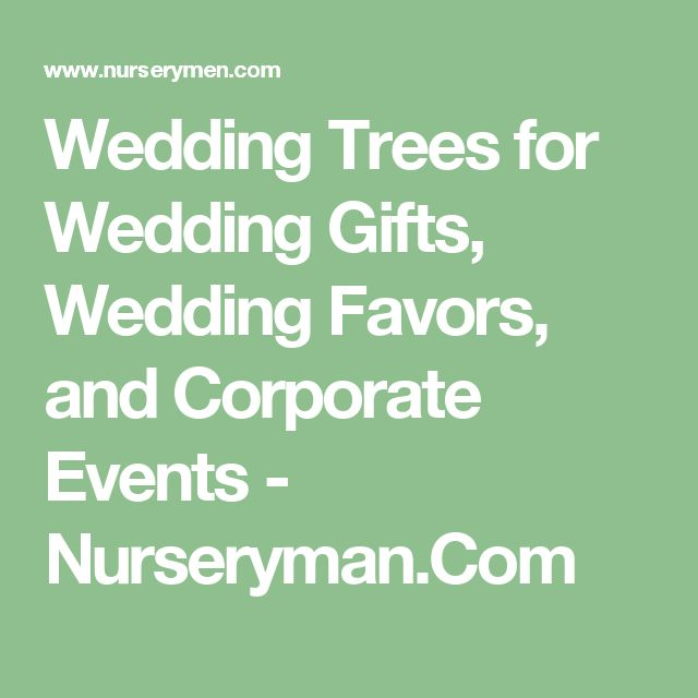 Wedding Trees for Wedding Gifts, Wedding Favors, and Corporate Events - Nurseryman.Com