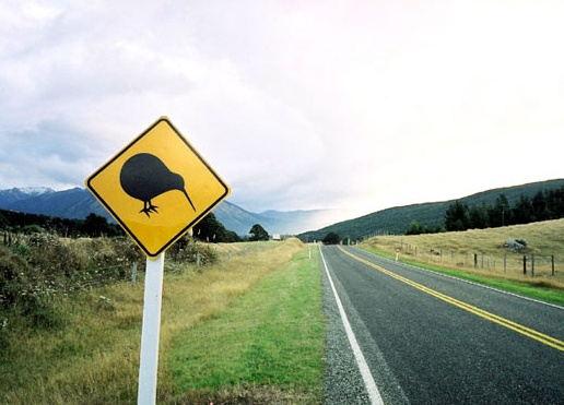 Only in New Zealand!