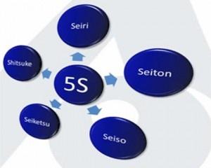 Delsoft é referência em programa 5S