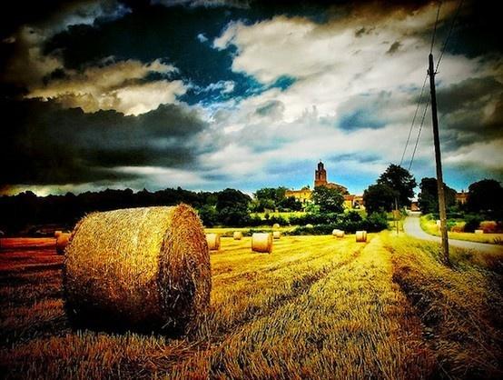 TEXASTexas Born, Summer Memories, Favorite Places, Farms, Texas Texas, Hay Bale, Beautiful Life, Texas Hills Country, Haybale