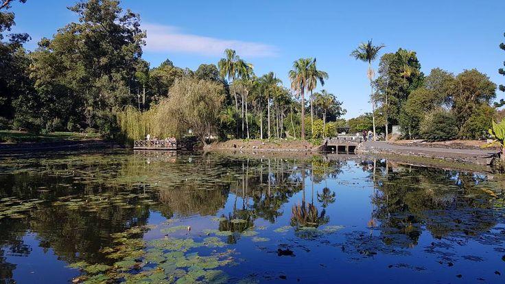 #christchurch #newzealand #tour #holiday #summer #student #travel #travelblogger #adventure #university #travelphotography #traveler #airport #skydive #kayak #brisbane #australia #cityscape http://butimag.com/ipost/1556032792654964126/?code=BWYI5SpDuWe