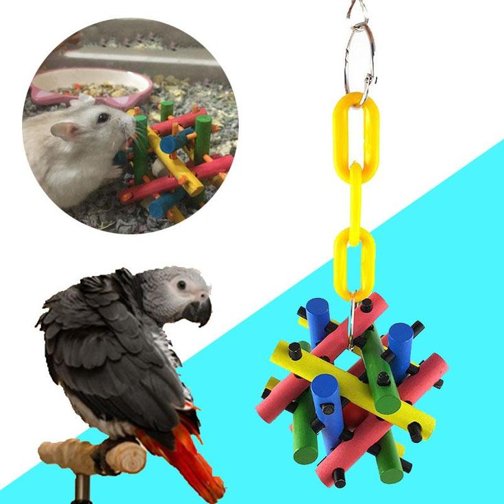 >> Click to Buy << Pet Bird Parrot Toys Wood Hanging Chew Bite Toy Cage Teeth Tool For Squirrel Cat Papegaaien Speelgoed #Affiliate