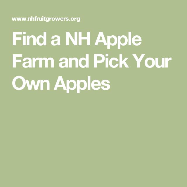 Find a NH Apple Farm and Pick Your Own Apples