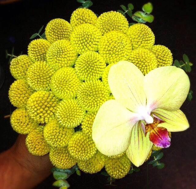 Sunny bridal bouquet with Craspedia and Phalaenopsis orchid.  Buchet de mireasă cu Craspedia şi orhidee Phalaenopsis. Un buchet luminos pentru o mireasă veselă