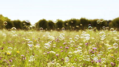 Bubbles and a field. Awesome.