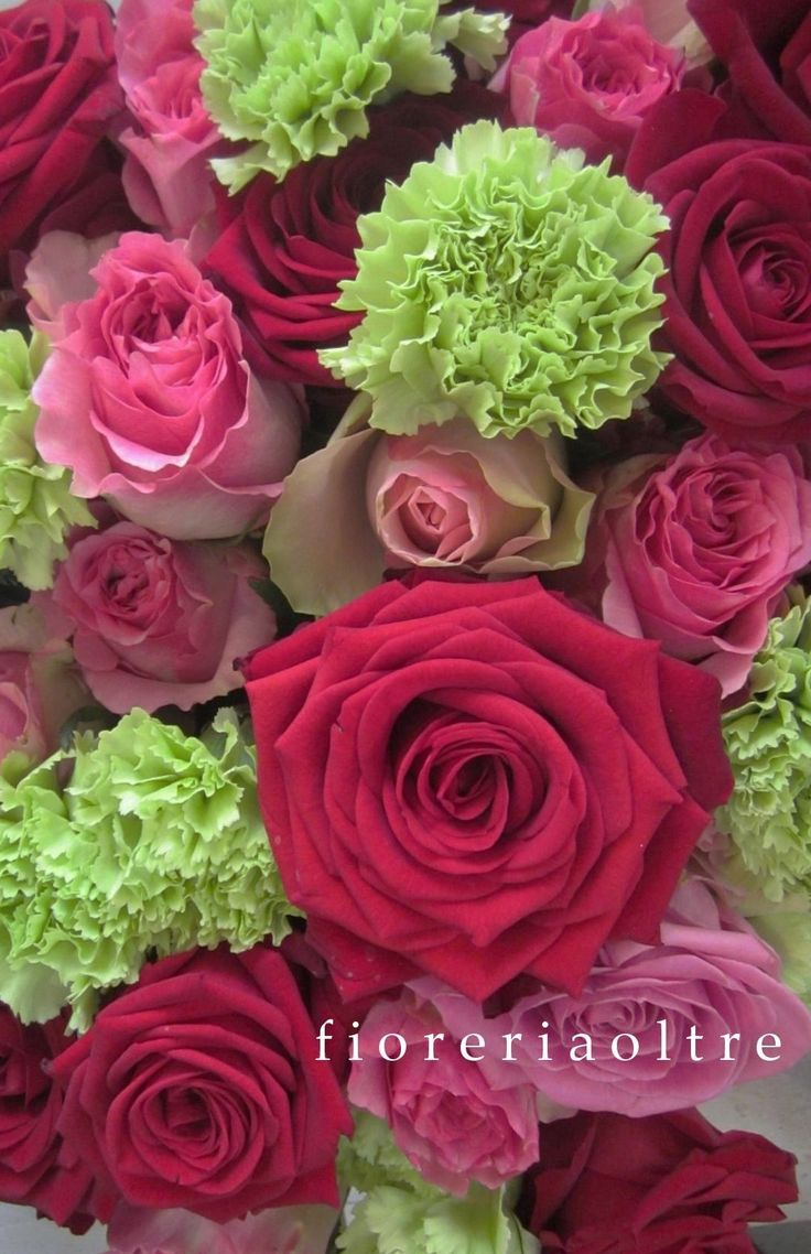 Fioreria Oltre/ Red roses, pink roses, green carnations