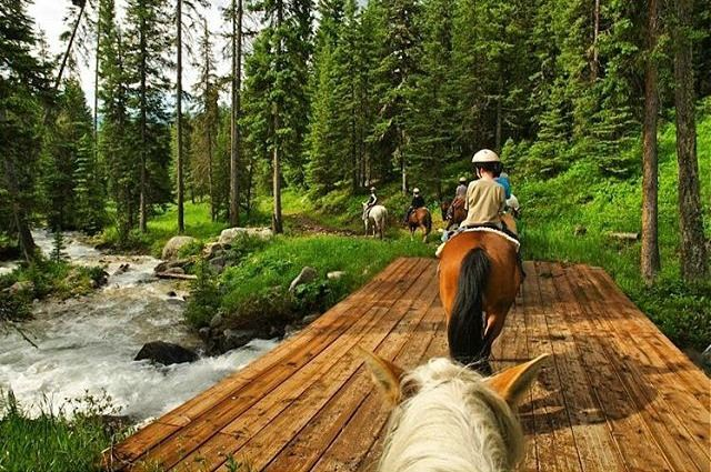 Thinking about a family dude ranch vacation? We talk about the types of dude ranches, what to look for, how much it costs, and the best family dude ranches.