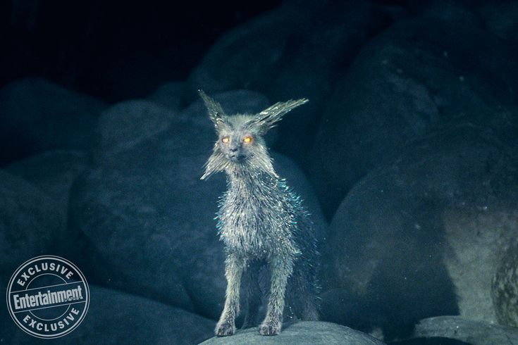 Luminous Beings: How <em>Star Wars: The Last Jedi</em>'s crystal foxes came to life