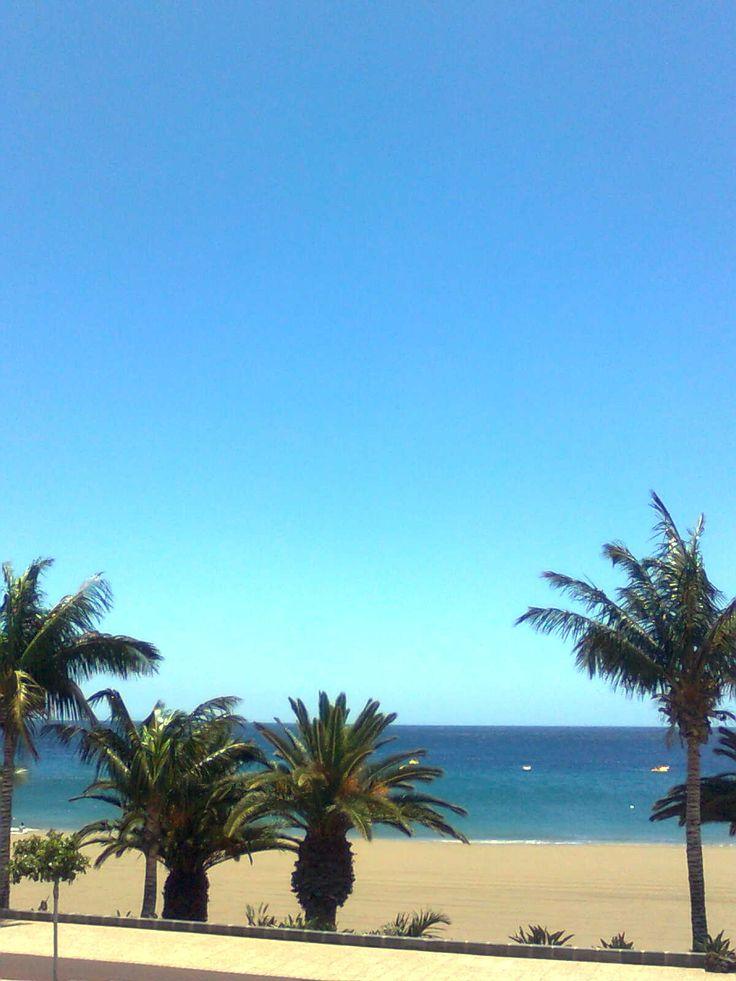 vapaa aikuisten dating palm beach fl
