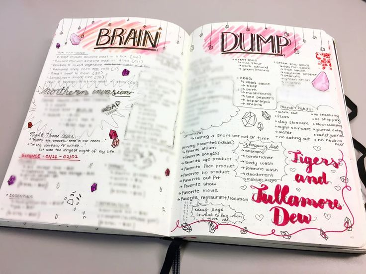 February brain dump. bulletjournal in 2020 Brain dump
