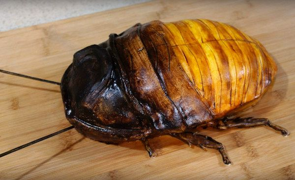 That's one big Madagascar Hissing Cockroach! But don't freak out—it's only a cake, created by New York nurse and food artist Katherine Dey. The roach is filled with Boston creme and has a fondant exterior.