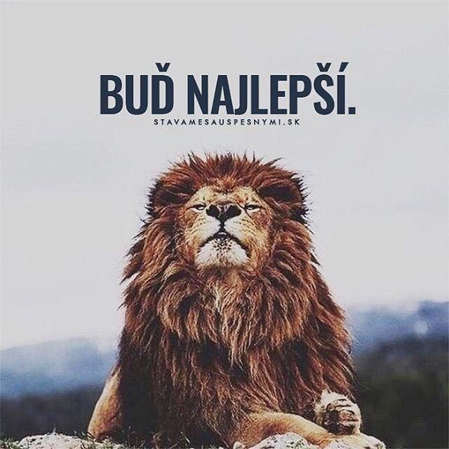 Všetkých prekonaj 👌 WEB NA 👉 @stavamesauspesnymi_sk 👈 #stavamesauspesnymi_sk #úspech #buď #najlepší