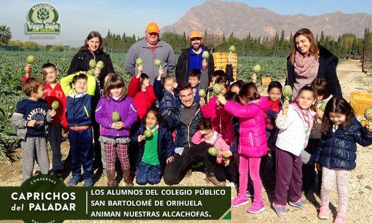 Empezamos la semana con un post sobre la visita de los escolares del CEIP San Bartolomé de Orihuela a una de nuestras fincas organizada por la Asociación de la Alcachofa de la Vega Baja