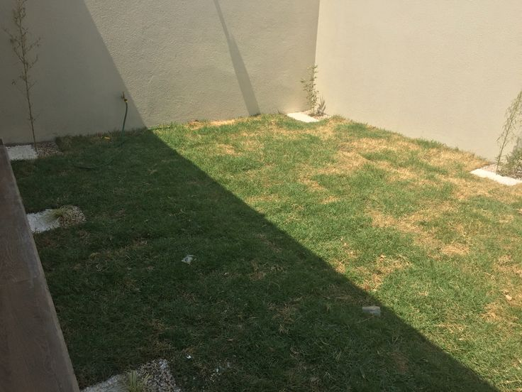 Jardin para relajarse