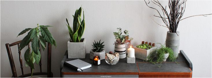 #concrete #concretedesign #concretefurniture #furnituredesign #greenery #plants #succulent #candles