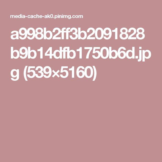 a998b2ff3b2091828b9b14dfb1750b6d.jpg (539×5160)