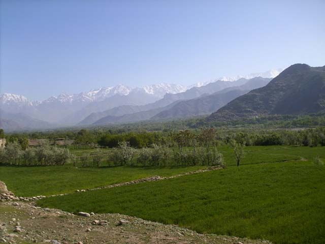 awesome Qatar Invests $20mn in Afghanistan Agriculture Sector http://Newafghanpress.com/?p=21614 3) Afghanistan Agriculture