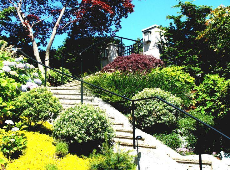 55 best images about home hillside backyards on pinterest for Hill landscape design