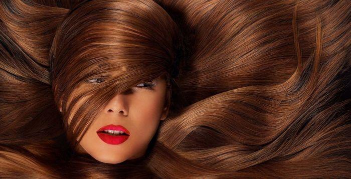 Trichophilia | Hair hacks, Silky hair, Long hair tips