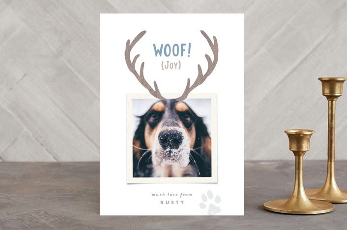 """""""Reindeer Ears"""" - Animal, Funny Holiday Photo Cards in Snow by Hooray Creative."""
