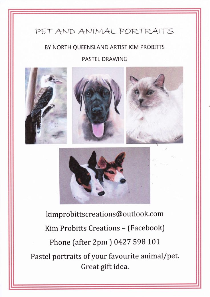 Beautiful Pet Portraits in Pastel, off your Photographs - satisfaction Guaranteed. Contact me - Kim Probitts at kimprobittscreations@outlook.com or follow me on facebook: https://www.facebook.com/pages/Kim-Probitts-Creations/529272683815844