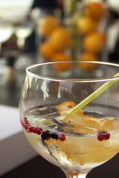 Como fazer um Gin Tónico perfeito?