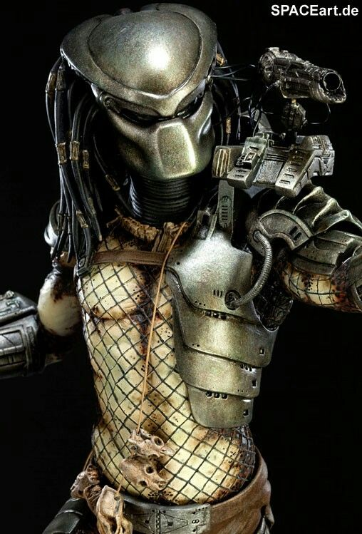 Classic Predator suited up and ready for action