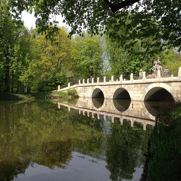 Found on Starpin. #Warsaw #park #lazienki #bridge #garden