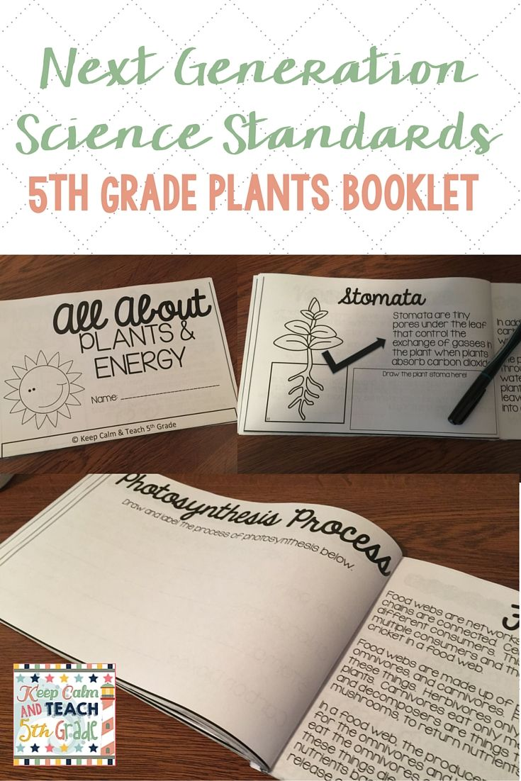 Next Generation Science Standards Aligned mini-book for 5th grade: All About Plants and Energy