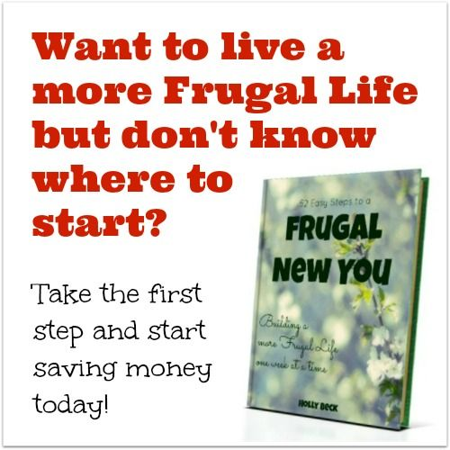 Holly from Frugal-Living-Now.com   -- all things frugal (and realistic!!)