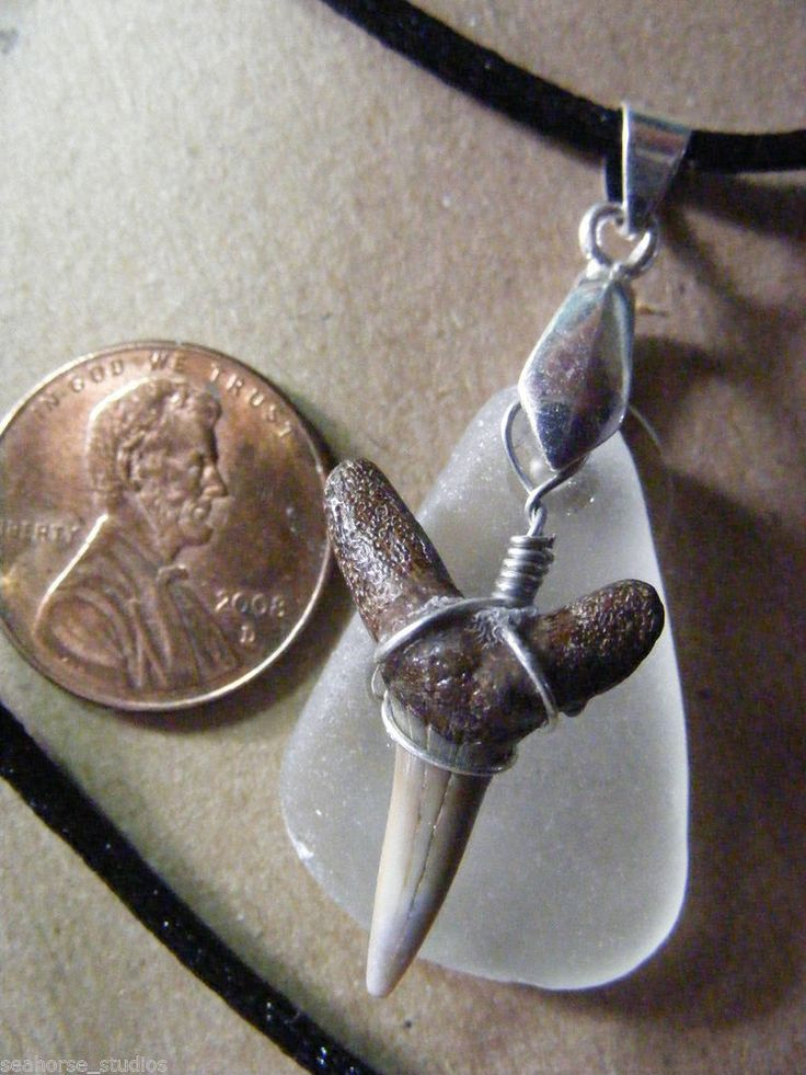 CHESAPEAKE BAY Frost White SEAGLASS & Fossil SHARK TOOTH Pendant, w/ black cord