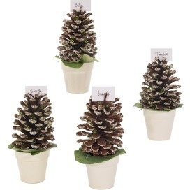 pine cone place card holderseasy little table decorations