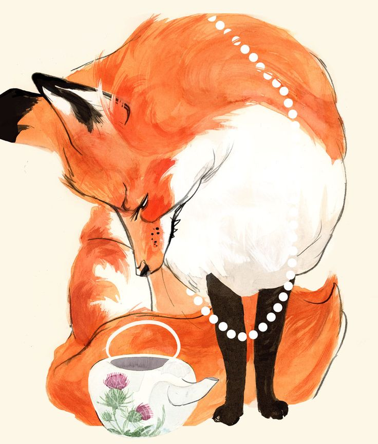 Fox & thistles! Fox art by Maddie Matthews ~ Velma's run out of tea