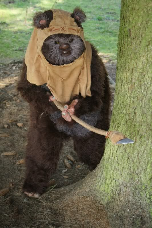 wicket ewok costume halloween ideas pinterest. Black Bedroom Furniture Sets. Home Design Ideas