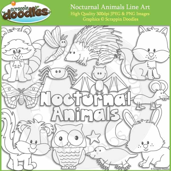 nocturnal animals coloring pages - photo#14