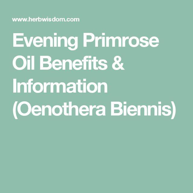 Evening Primrose Oil Benefits & Information (Oenothera Biennis)